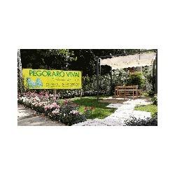 Pegoraro Vivai - Giardinaggio - servizio Candiana