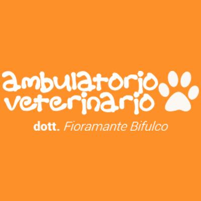 Ambulatorio Veterinario Dr. Bifulco Fioramante - Animali domestici - toeletta Ottaviano