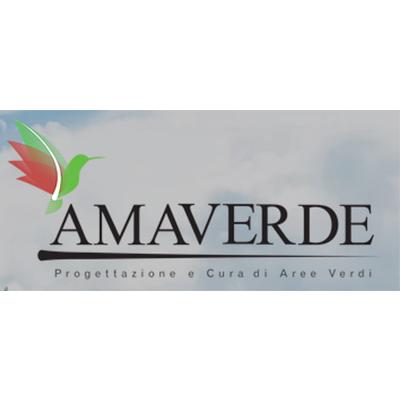 Amaverde - Francesco Limongelli