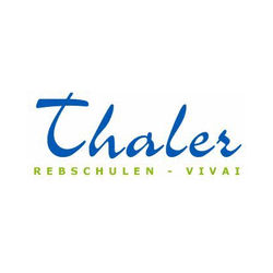 Vivai Thaler Thaler e co Sas