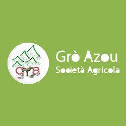 Grò Azou - Latte D'Asina - Allevamento e Vendita Asini Martinesi - Bestiame - allevamento e commercio Torino