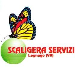 Scaligera Servizi Spurgo Pozzi Neri - Rifiuti industriali e speciali smaltimento e trattamento Legnago