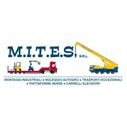 Mites - Autogru - noleggio Nichelino