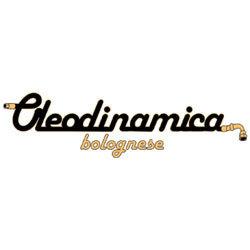 Oleodinamica Bolognese - Tubi flessibili per pressioni Bologna