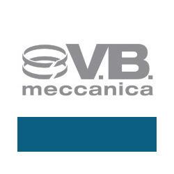 V.B. Meccanica - Motori marini Pontoglio