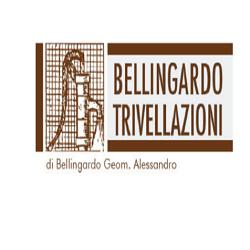 Bellingardo Trivellazioni - Pozzi artesiani - trivellazione e manutenzione Arzergrande