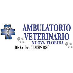 Clinica  Veterinaria Nuova Florida