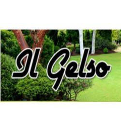 Il Gelso - Giardinaggio - servizio Zero Branco
