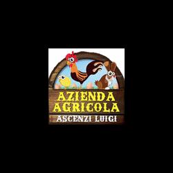 Azienda Agricola Ascenzi