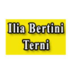 Autodemolizioni Bertini Ilia - Ricambi e componenti auto - commercio Terni