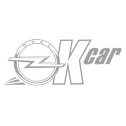Officina Ok Car Autorizzata Opel - Autofficine e centri assistenza Ravenna