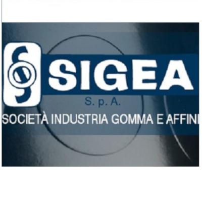 Societa' Industria Gomma e Affini (S.I.G.E.A. Spa) - Gomma articoli tecnici - produzione e commercio Avigliana
