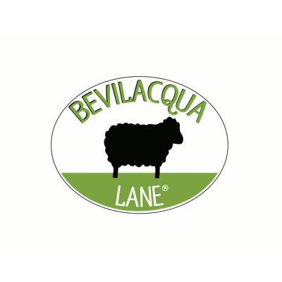 Bevilacqua Lane Srl - Filati - vendita al dettaglio Arzignano