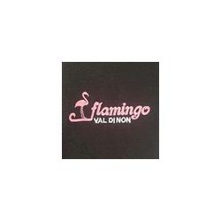 Flamingo Sas - Pizzerie Cles