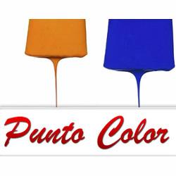 Punto Color - Colori, vernici e smalti - vendita al dettaglio Modena
