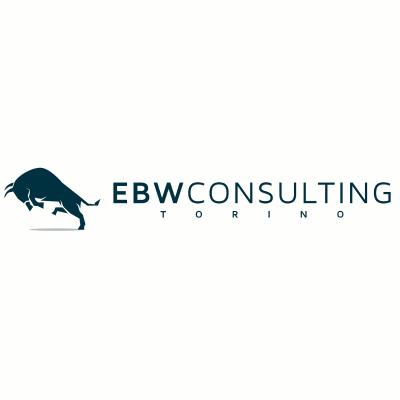 EBW Consulting - Acque minerali e bevande, naturali e gassate - commercio Torino