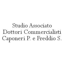 Studio Associato Dottori Commercialisti Caponeri P. e Freddio S. - Dottori commercialisti - studi Ponte San Giovanni