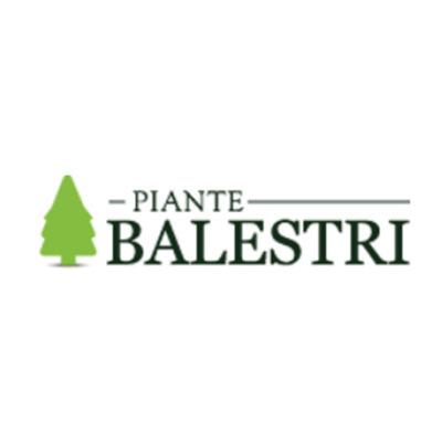 Balestri Piante Vivai Garden - Vivai piante e fiori Montevarchi