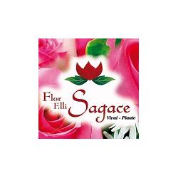 Flor F.lli Sagace