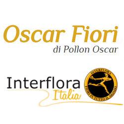 Fioreria Oscar - Interflora - Fiori e piante - vendita al dettaglio Conegliano