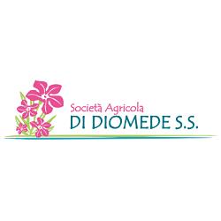 Vivai di Diomede - Vivai piante e fiori Alba Adriatica