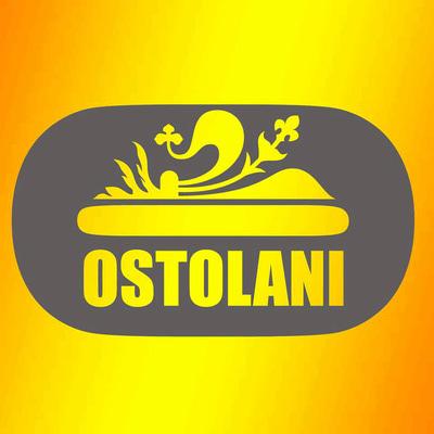 Ostolani  - Cartoleria Print & Copia - Fotocopie Firenze