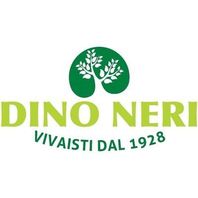 Vivaio Neri Dino - Giardinaggio - servizio Noceto