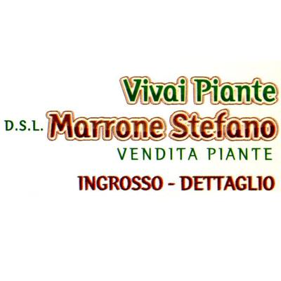 Vivaio Marrone Stefano - Giardinaggio - servizio Piana di Monte Verna