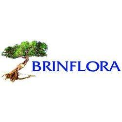 Brinflora Giustizieri Onoranze Funebri - Articoli funerari Brindisi