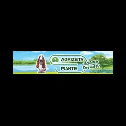 Agrizeta Piante - Vivai piante e fiori Anzio