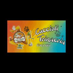 Cuccioli Trinacria Negozio di Animali e Pesca - Acquari ornamentali ed accessori Monforte Marina