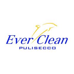 Bio Pulisecco Ever Clean