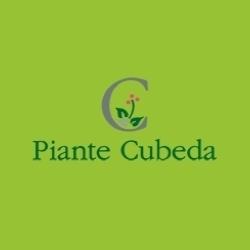 Vivaio Piante Cubeda - Vivai piante e fiori Aci Sant'Antonio