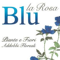 La Rosa Blu - Fiori e piante - vendita al dettaglio Controguerra