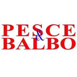 Traslochi Pesce & Balbo - Traslochi Alassio