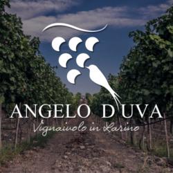 Wine Relais I Dolci Grappoli delle Cantine D'Uva - Agriturismo Larino