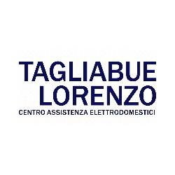Riparazione Elettrodomestici Tagliabue Lorenzo - Lavastoviglie e lavatrici - riparazione Cantù