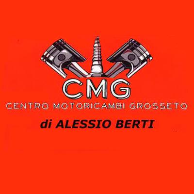 Centro Motoricambi Grosseto di Alessio Berti - Motocicli e motocarri - commercio e riparazione Grosseto