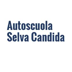 Autoscuola Mangiapelo - Pratiche automobilistiche Roma