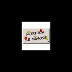 Fioreria Le Mimose - Fiori e piante - vendita al dettaglio Mede