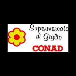 Superstore Il Giglio Supermercato Conad - Centri commerciali, supermercati e grandi magazzini Cavriago