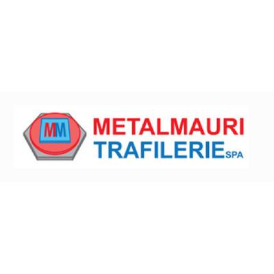 Metalmauri Trafilerie - Trafilati ferro ed acciaio Bareggio
