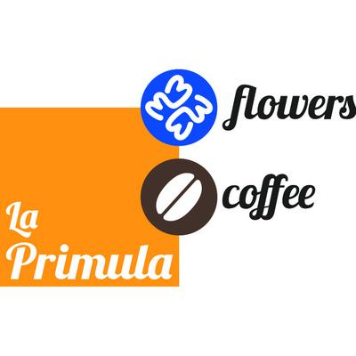 La Primula Flowers & Coffee - Fiori e piante - vendita al dettaglio Avigliana