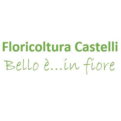 Floricoltura Castelli - Fiori e piante - vendita al dettaglio Tradate