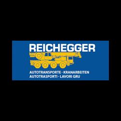 Autogru Reichegger Paul - Piattaforme e scale aeree Aicha