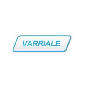Renato Varriale e C. - Motori marini Napoli