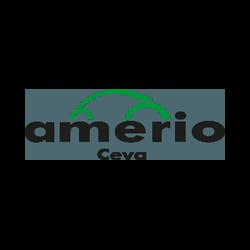 Amerio Auto - Automobili - commercio Ceva