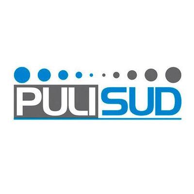 Pulisud - Gru - noleggio Campobasso