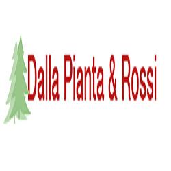 Dalla Pianta & Rossi Vivaio e Piante da Giardino - Vivai piante e fiori Forlì