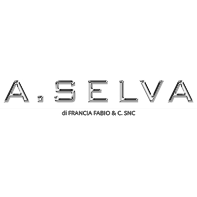 Officina Meccanica A. Selva - Autofficine e centri assistenza San Lazzaro di Savena